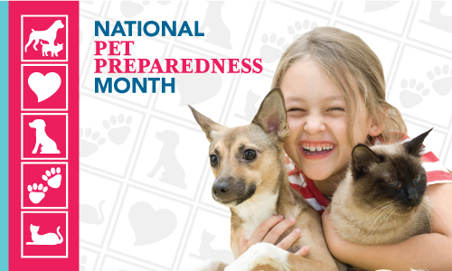 National Pet Preparedness Month