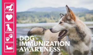 Immunization Awareness