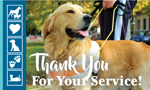 National Service Dog Month | Crossroads Animal Hospital