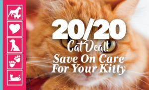 20/20 Cat Care Deal | Crossroads Animal Hospital