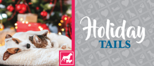 Holiday Tails