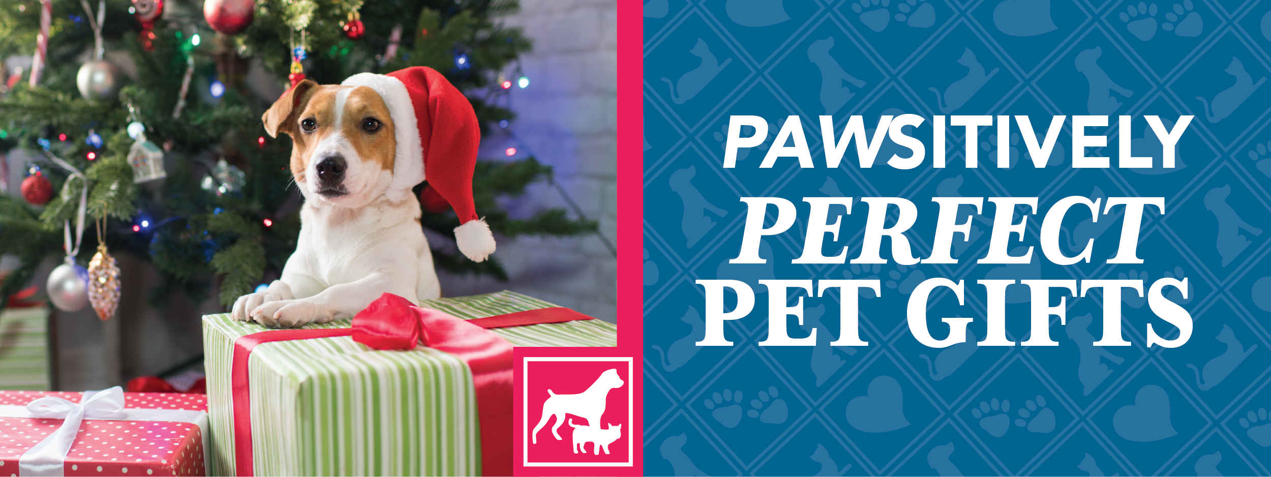 Gifts for Pets | Crossroads Animal Hospital