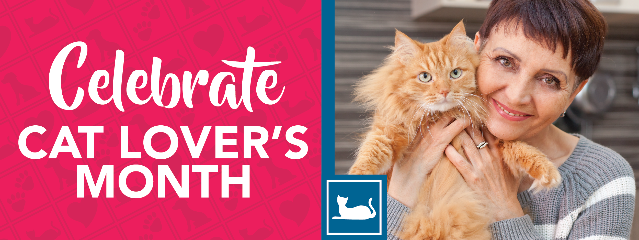 Cat Lovers' Month | Crossroads Animal Hospital