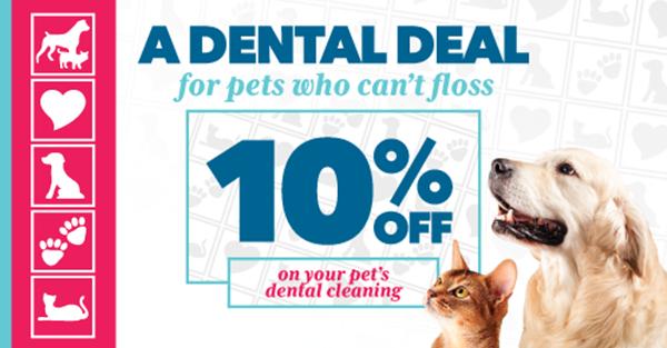10 percent off dental