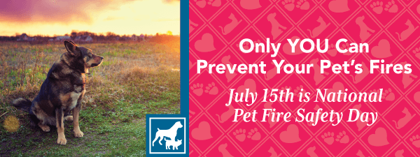 Only YOU Can Prevent Your Pet's Fires July 15th is National Pet Fire Safety Day